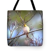 Img_0001 - American Goldfinch Tote Bag