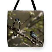 2 In A Tree Tote Bag