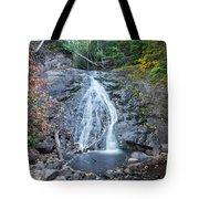 Jacob's Falls Tote Bag