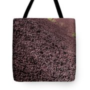 John Day Fossil Beds  Tote Bag