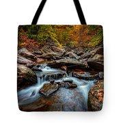 Kaaterskill Creek Tote Bag