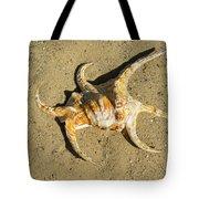 Lambis Arthritica Spider Conch Tote Bag