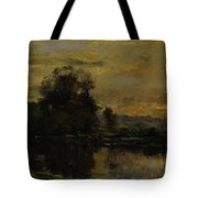 Landscape With Ducks Tote Bag