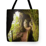 Levada Da Serra Do Faial, Madeira Tote Bag