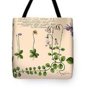 Linnaea Borealis, Linnaeuss Favorite Tote Bag