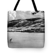 Loch Ness Monster, 1934 Tote Bag