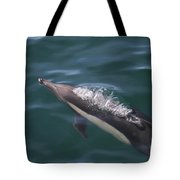 Long-beaked Common Dolphins In Monterey Bay 2015 Tote Bag