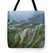 Longsheng Rice Terraces Tote Bag