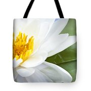 Lotus Flower Tote Bag by Elena Elisseeva