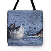 Lunge-feeding Humpback Whales Tote Bag