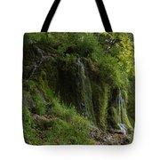 Malanaphy Springs Tote Bag