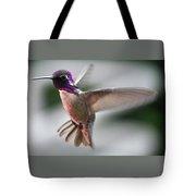 Male Anna's In Flight Tote Bag