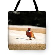 Male Ring-necked Pheasant Tote Bag