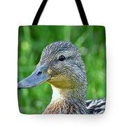 Mallard Duck Hen Tote Bag