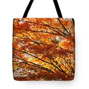 Maple Tree Foliage Tote Bag