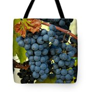 Marechal Foch Grapes Tote Bag