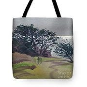 Miramonte Point 1 Tote Bag