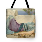 Mischief And Repose Tote Bag