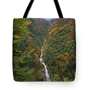 Misty Forest, Turkey  Tote Bag