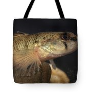 Mobile Logperch Percina Kathae Tote Bag