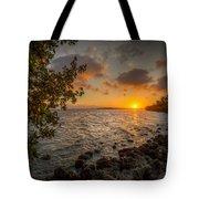 Morning At The Mangroves Tote Bag