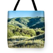 Muir Woods Forest Drive By Nature Near San Francisco Tote Bag