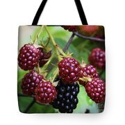 My Blackberries Tote Bag