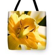10553 Narcissus Superstar - Flower 080  Tote Bag