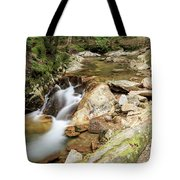 New England Waterfall Tote Bag