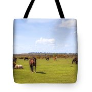 New Forest - Hampshire - Uk Tote Bag