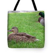 New Zealand - Pair Of Mallard Duck Tote Bag