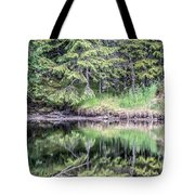 Northern Landscape And Nature In Alaska Panhandle Tote Bag