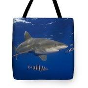 Oceanic Whitetip Shark Tote Bag