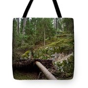 Old Forest In Kauppi Tampere Tote Bag