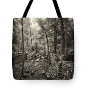 Old Stone Fort Tote Bag