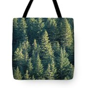 Oregon, Cascade Mountain Tote Bag