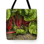 Organic Swiss Chard Tote Bag