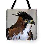 Ornate Hawk-eagle Tote Bag