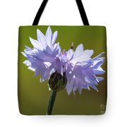 Pale Blue Bachelor Button From The Double Ball Mix Tote Bag