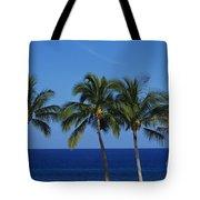 Palm Tree Tops Tote Bag