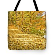 Path Through A Pennsylvania Deciduous Forest Autumn Tote Bag