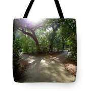 2 Paths  Tote Bag