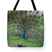 2 Peacocks And A Black Pussy Cat Tote Bag