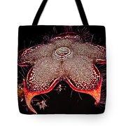 Persian Carpet Flower Tote Bag