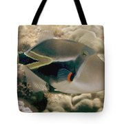 Picasso Triggerfish Tote Bag