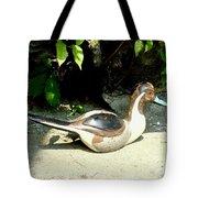 Pintail Tote Bag