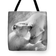Polar Bear Cubs Tote Bag