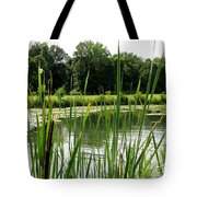 Pond At Beaver Island State Park In New York Tote Bag