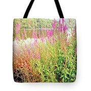 Pond In The Bershire Mountains, Massachusetts Tote Bag
