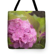 Purple Hydrangea At Rainy Garden In June, Japan Tote Bag